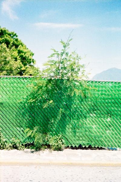http://vitorjardim.com/files/gimgs/th-69_vitorjardim_mexico_01.jpg