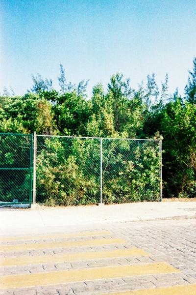 http://vitorjardim.com/files/gimgs/th-69_vitorjardim_mexico_07.jpg