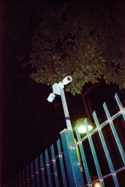 http://vitorjardim.com/files/gimgs/th-91_vitorjardim_vida-de-gado_09.jpg